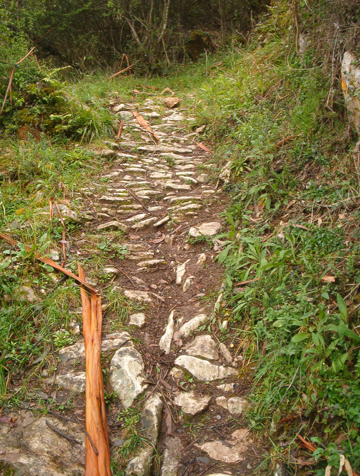 Steep, rocky<br>path